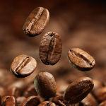 Káva - cesta voňavého moku. Část 3. - Jak připravit kávu?